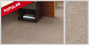 Instant Online Quote For Residential Carpet Replacement