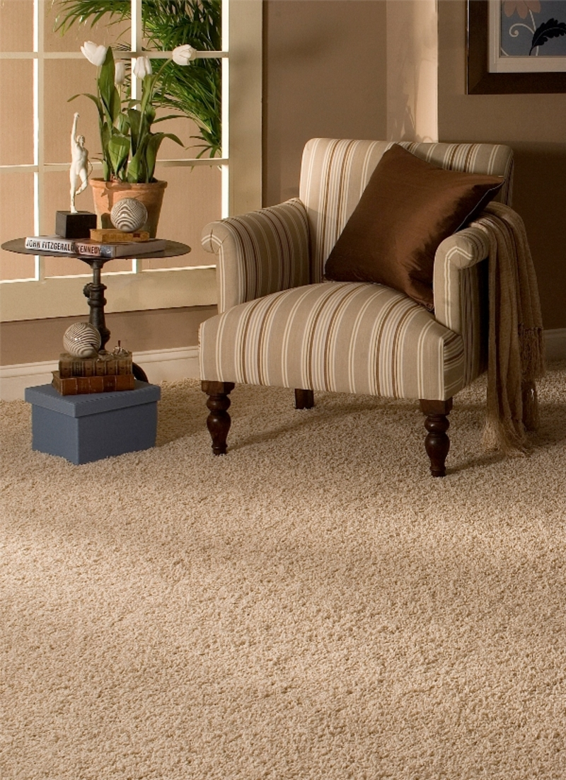 m&r carpet and flooring company - instant quote request - burbank Carpet for Lounge Room